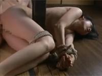 【ヘンリー塚本】熟妻を台所で縛り突きまくる倒錯した性癖